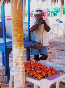 Photo Copyright Terrah Lozano 'Man with Cashew Fruit' Canoa Quebrada, Brazil